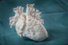 Насколько мы близки к 3D-печати человеческого сердца